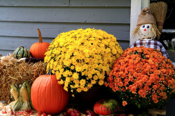 Five Easy Tasks To Get Your Home Fall-Ready!